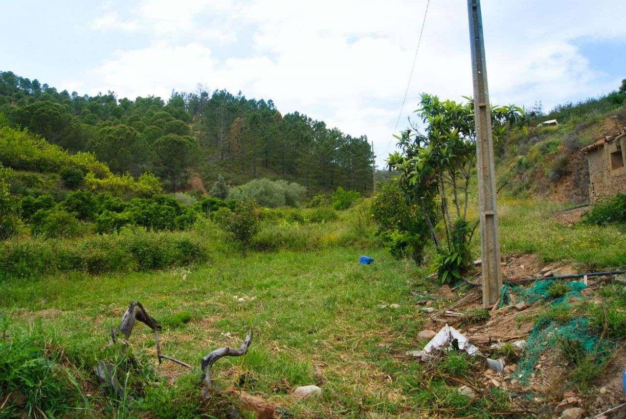 Terreno para comprar, Alferce, Monchique, Faro - Foto 15