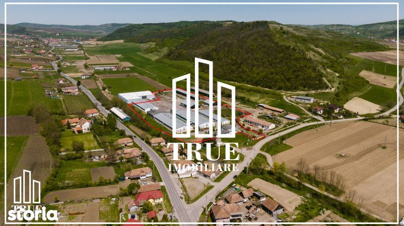 Platformă industrială cu afacere la cheie, Voiniceni - Târgu Mureș!