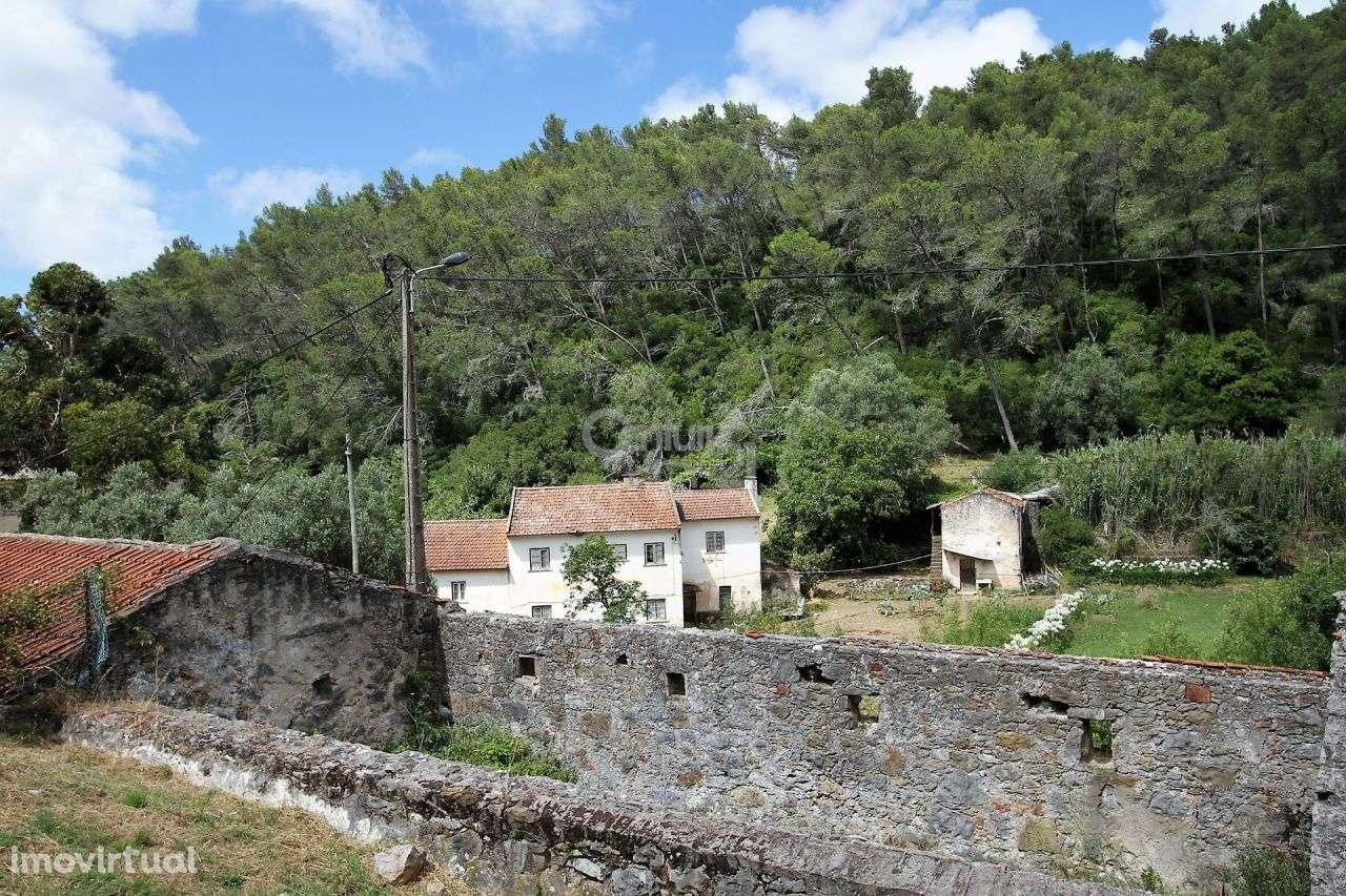 Quintas e herdades para comprar, Alcabideche, Cascais, Lisboa - Foto 16