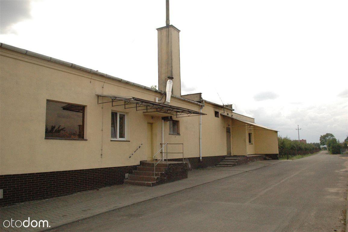Lokal użytkowy, 442 m², Krzywiń
