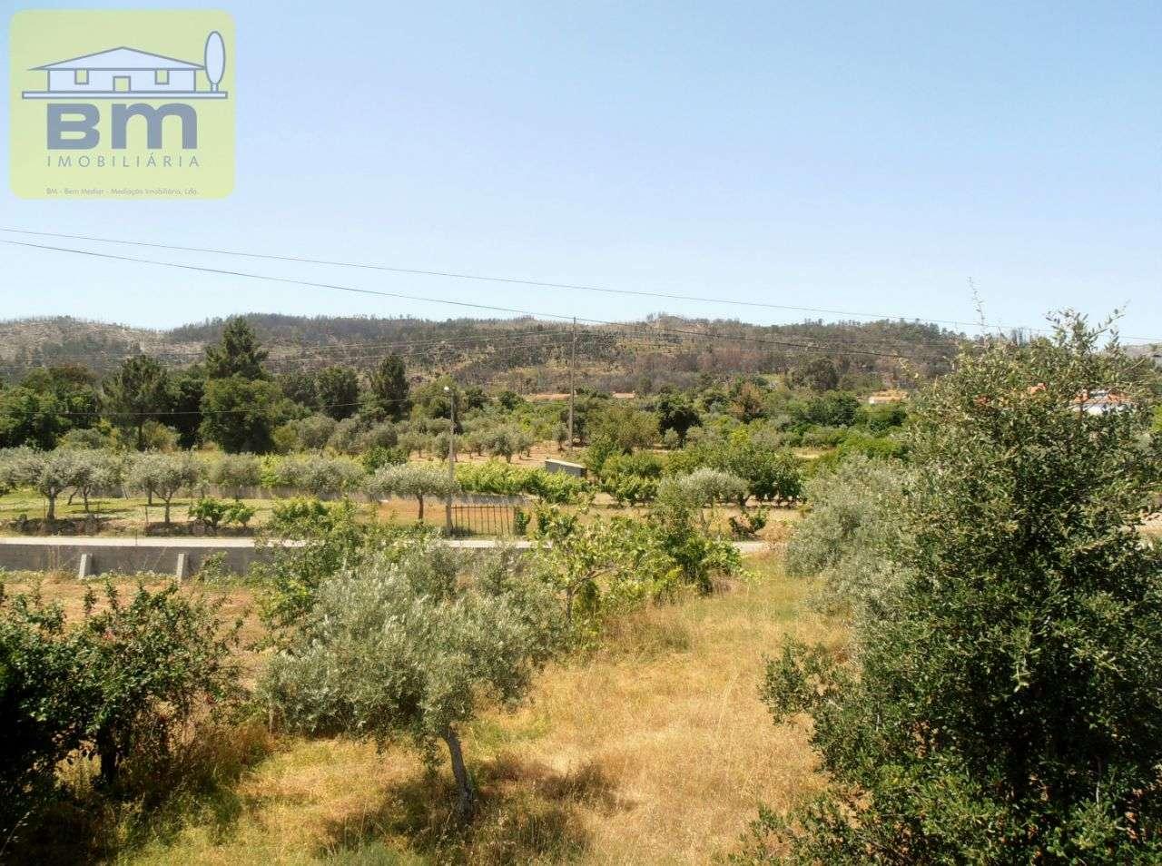 Quintas e herdades para comprar, Alcains, Castelo Branco - Foto 27