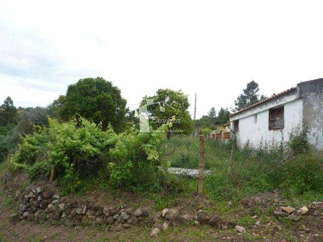 Quintas e herdades para comprar, Martinchel, Abrantes, Santarém - Foto 31