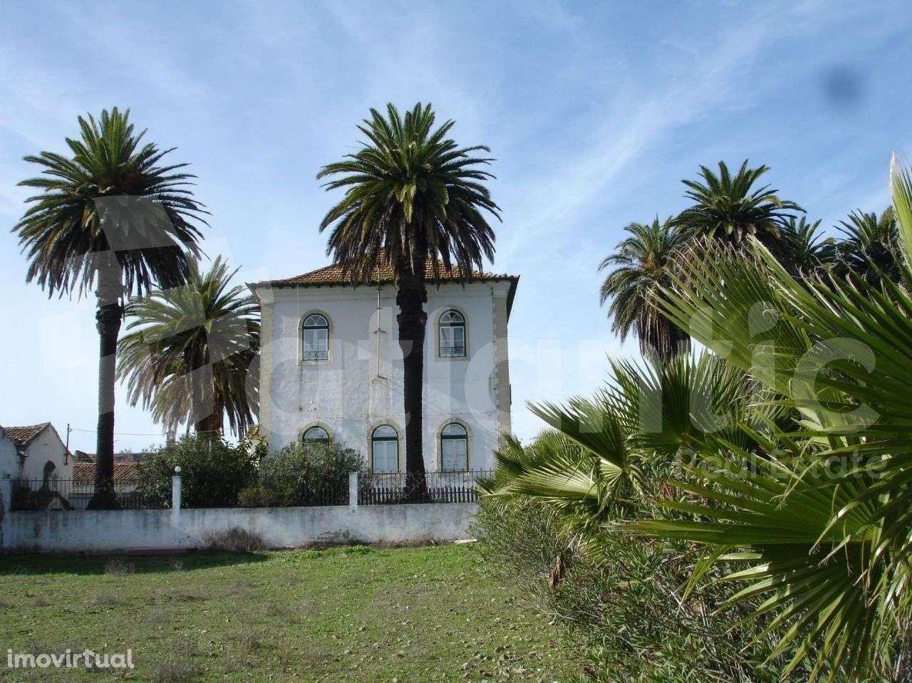 Quintas e herdades para comprar, Beja (Salvador e Santa Maria da Feira), Beja - Foto 2
