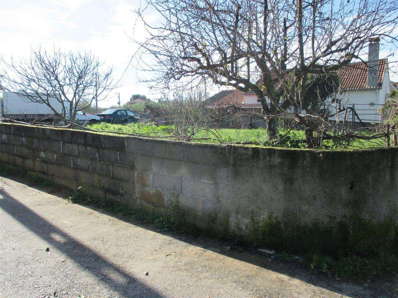 Terreno para comprar, Dominguizo, Castelo Branco - Foto 2