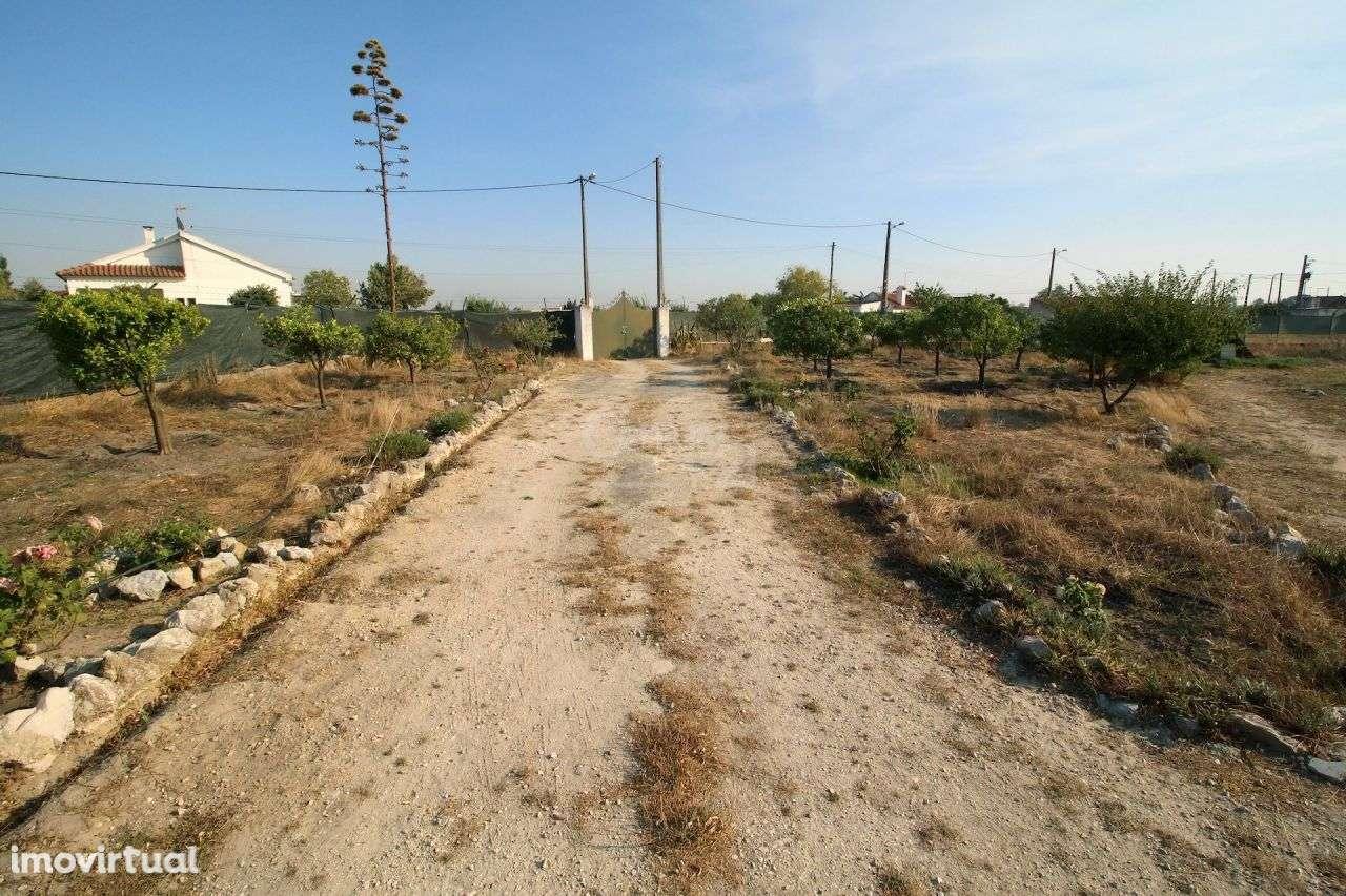 Quintas e herdades para comprar, Poceirão e Marateca, Setúbal - Foto 31