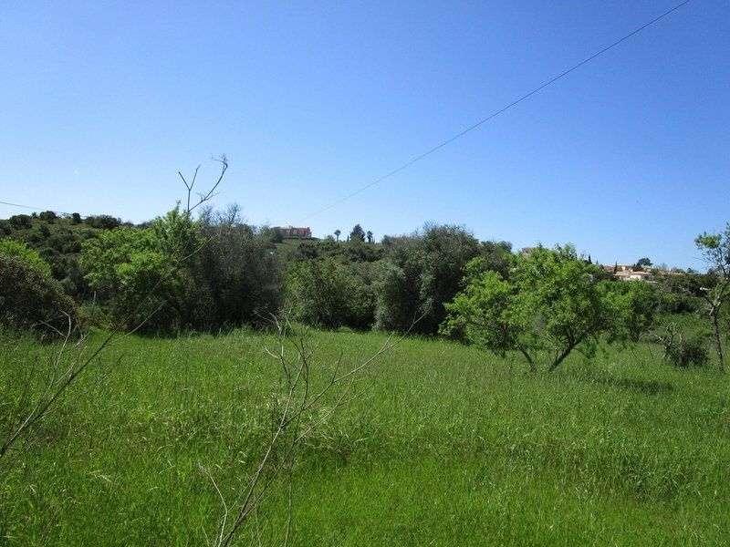 Quintas e herdades para comprar, Estômbar e Parchal, Lagoa (Algarve), Faro - Foto 3