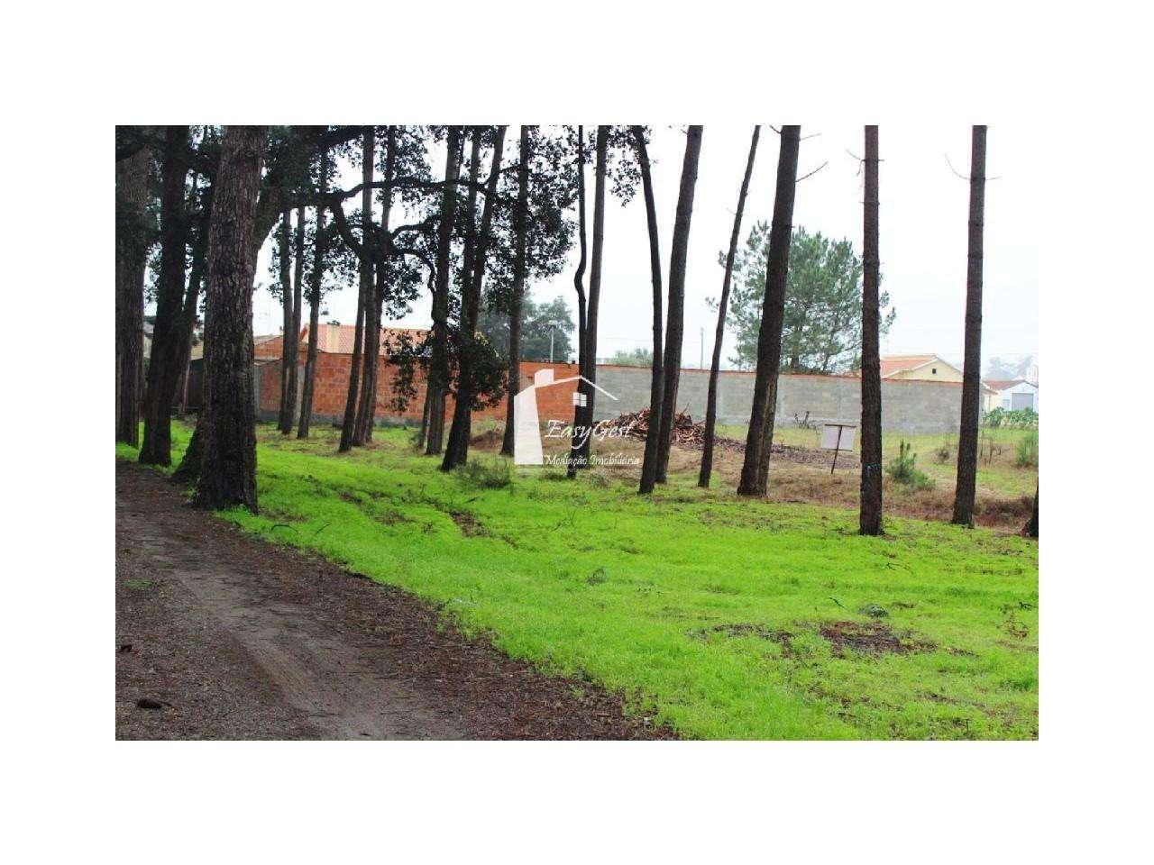 Terreno para comprar, Monte Redondo e Carreira, Leiria - Foto 20