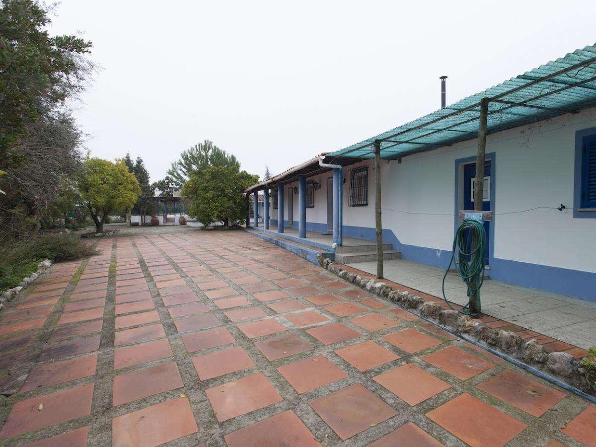 Quintas e herdades para comprar, Benavila e Valongo, Portalegre - Foto 32