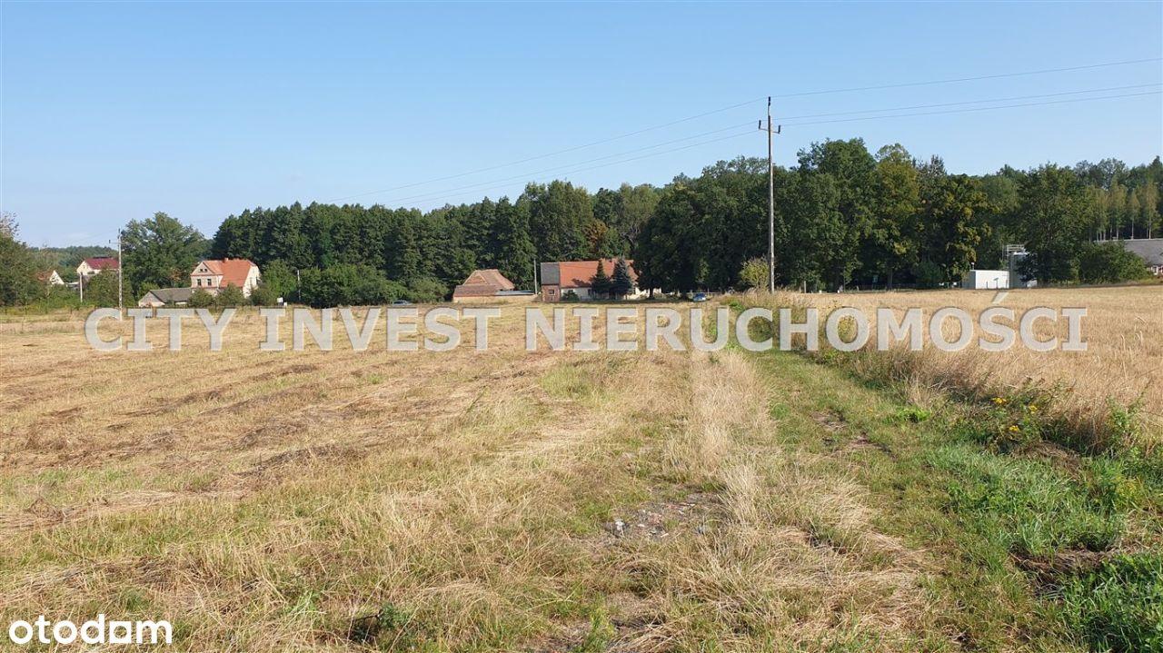 Działka, 33 153 m², Trzemeszno Lubuskie