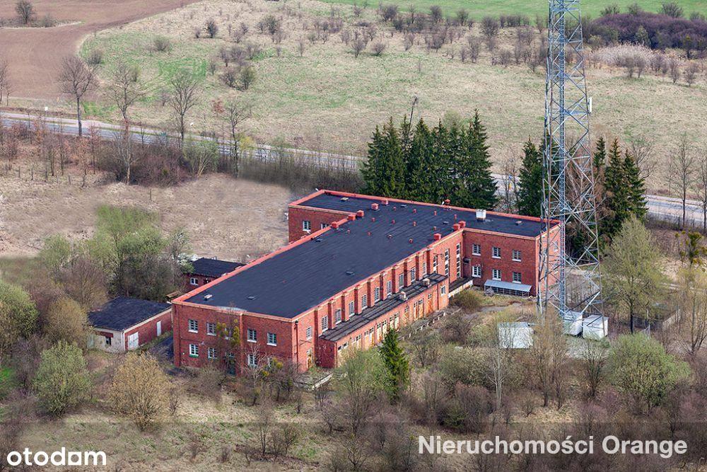 Lokal użytkowy, 3 153 m², Lidzbark Warmiński