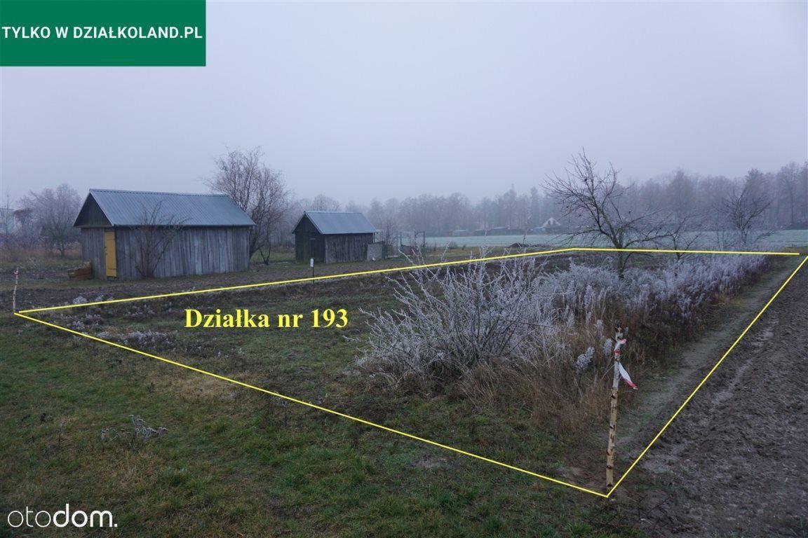 Działka rolna nr 193,Cieleśnica Pgr, Rokitno