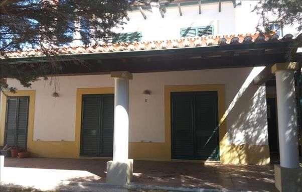 Moradia para comprar, Chamusca e Pinheiro Grande, Santarém - Foto 1