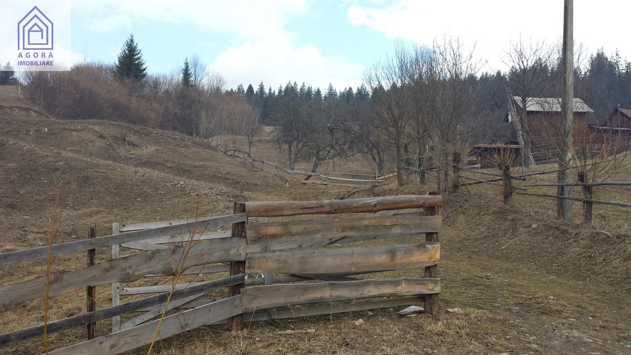 Teren casa, pensiune, pastravarie, Campulung Moldovenesc