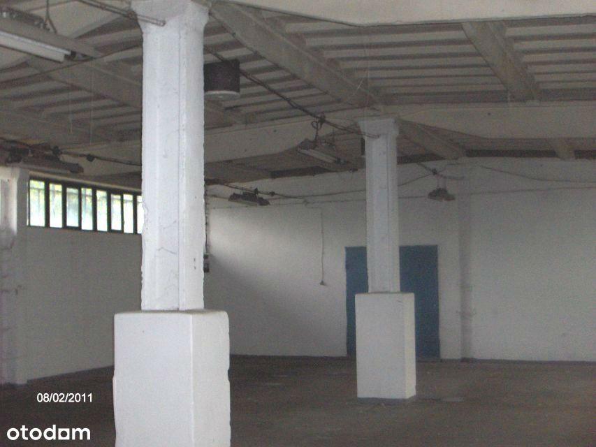 Lokal użytkowy, 550 m², Kędzierzyn-Koźle