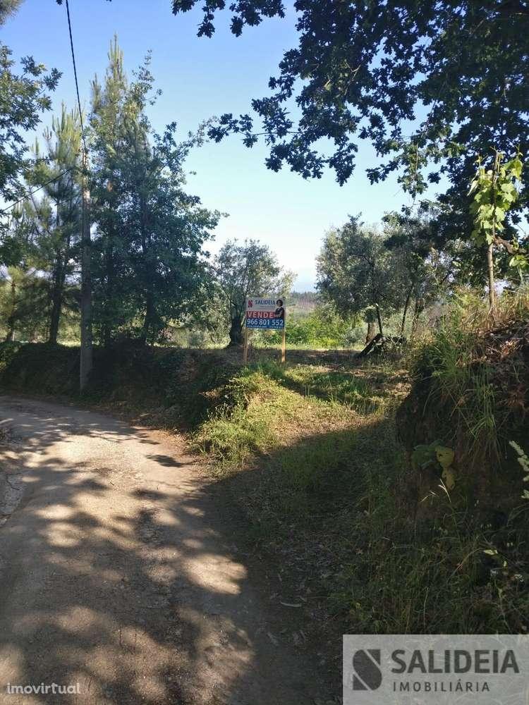 Terreno para comprar, Currelos, Papízios e Sobral, Viseu - Foto 17