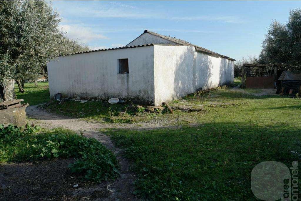 Quintas e herdades para comprar, Grândola e Santa Margarida da Serra, Setúbal - Foto 10