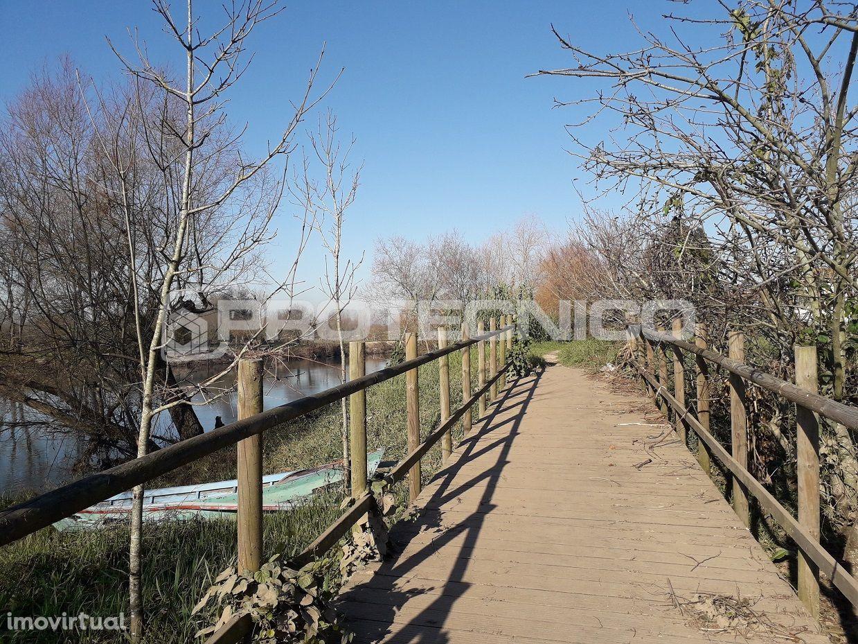 Terreno para comprar, Albergaria-a-Velha e Valmaior, Albergaria-a-Velha, Aveiro - Foto 7