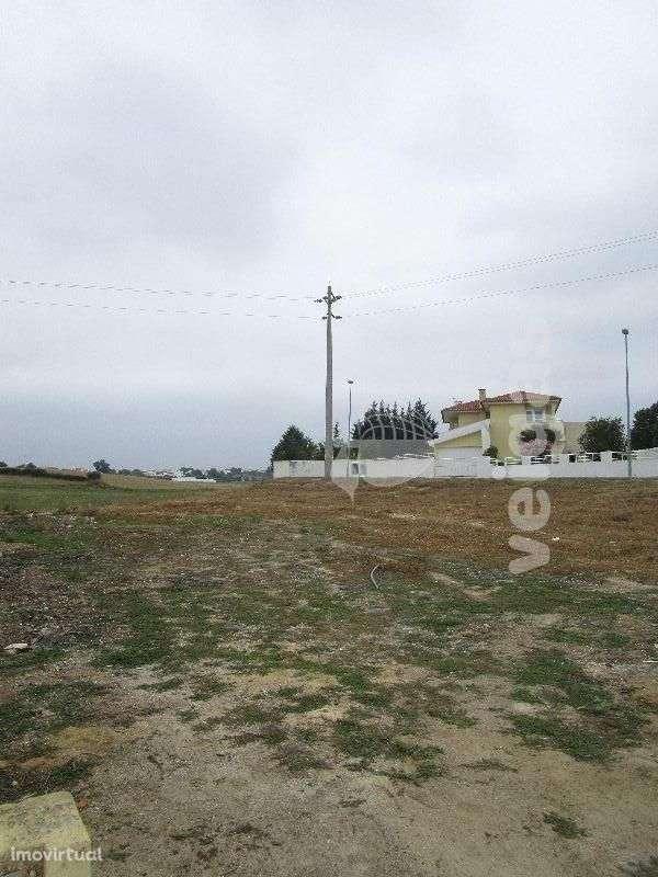 Terreno para comprar, Romeira e Várzea, Santarém - Foto 4