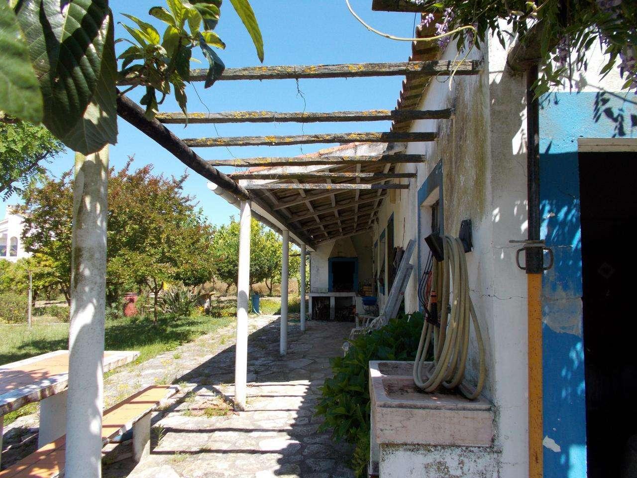 Quintas e herdades para comprar, Vale de Santarém, Santarém - Foto 5