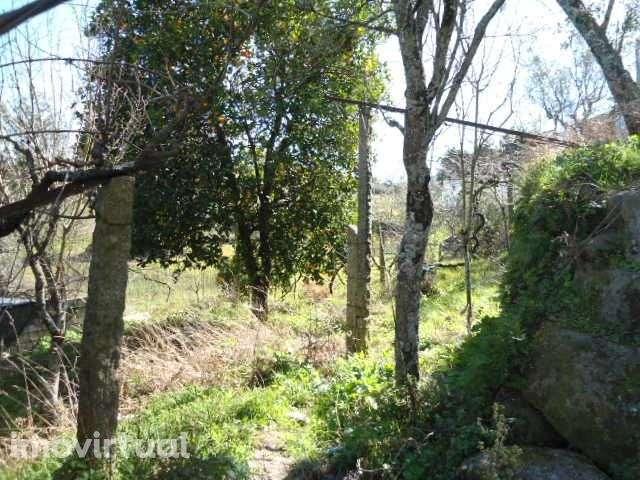 Quintas e herdades para comprar, Bem Viver, Marco de Canaveses, Porto - Foto 11