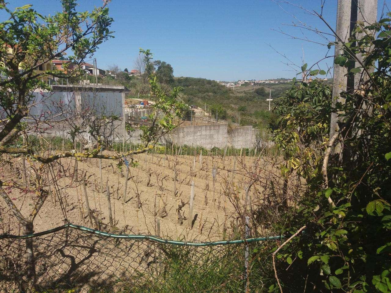 Quintas e herdades para comprar, Alhandra, São João dos Montes e Calhandriz, Vila Franca de Xira, Lisboa - Foto 6