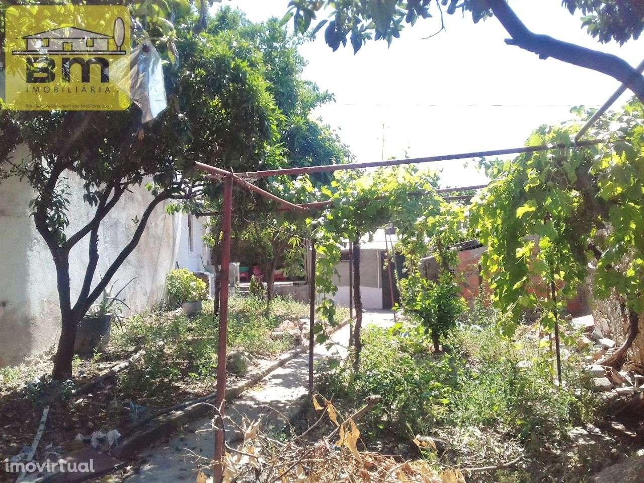 Moradia para comprar, Idanha-a-Nova e Alcafozes, Idanha-a-Nova, Castelo Branco - Foto 18