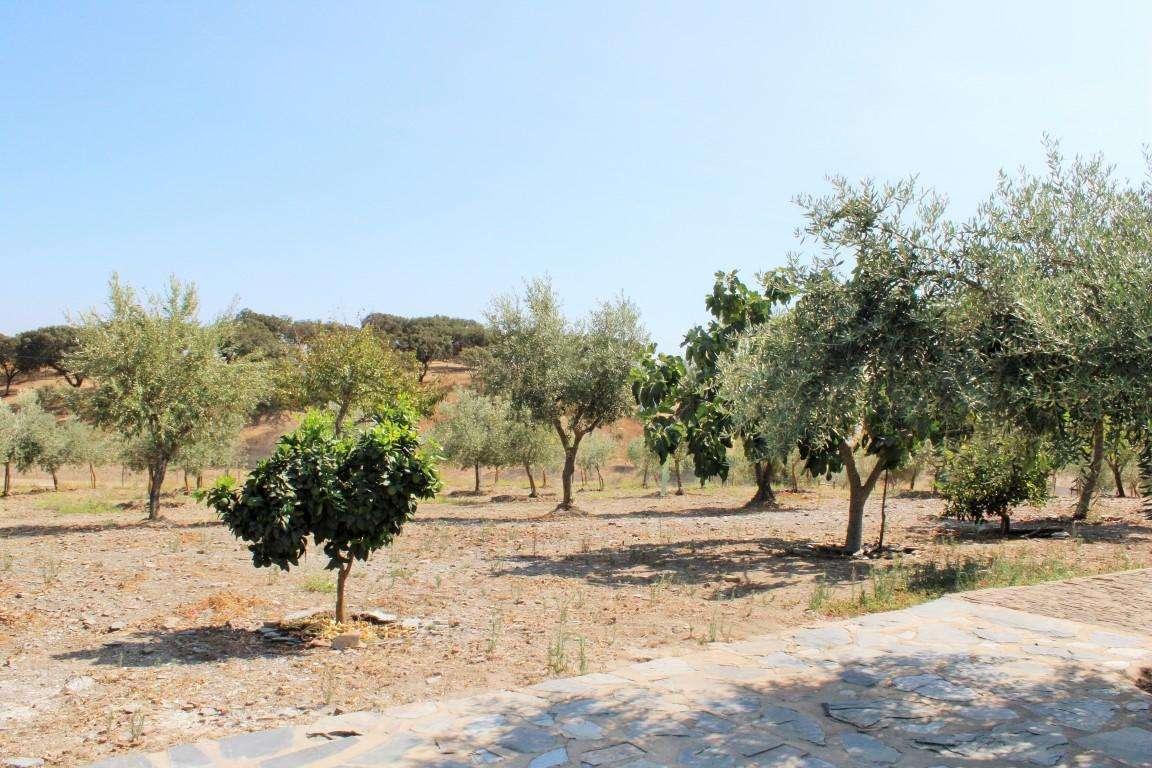 Quintas e herdades para comprar, Santo António (Capelins), Évora - Foto 45