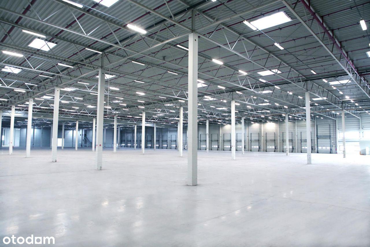Hala/Magazyn, 11 000 m², Kielce