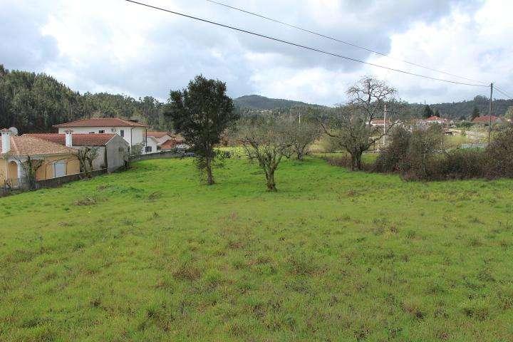 Terreno para comprar, Mortágua, Vale de Remígio, Cortegaça e Almaça, Viseu - Foto 5
