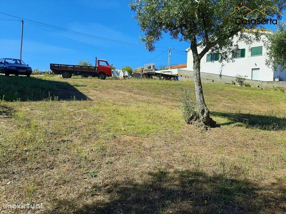 Terreno para comprar, Cernache do Bonjardim, Nesperal e Palhais, Sertã, Castelo Branco - Foto 5