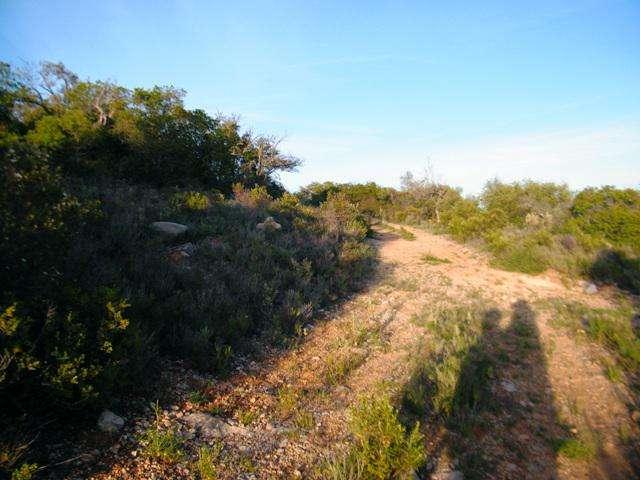 Terreno para comprar, Quelfes, Faro - Foto 10