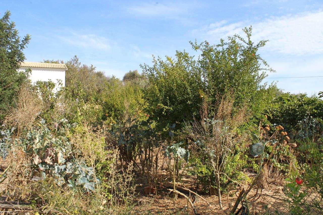 Quintas e herdades para comprar, Armação de Pêra, Faro - Foto 47