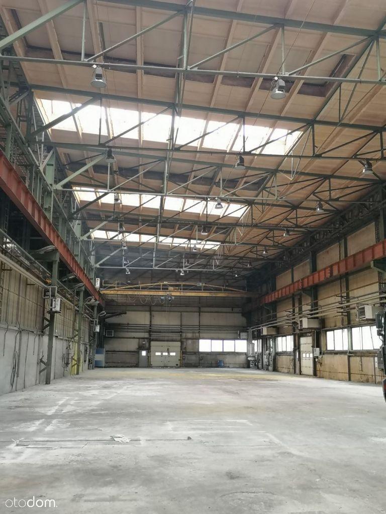 Hala/Magazyn, 1 400 m², Tarnowskie Góry