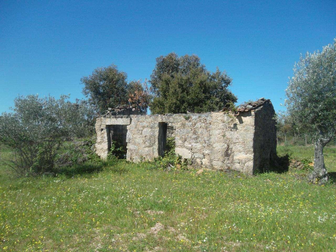 Quintas e herdades para comprar, Lardosa, Castelo Branco - Foto 1