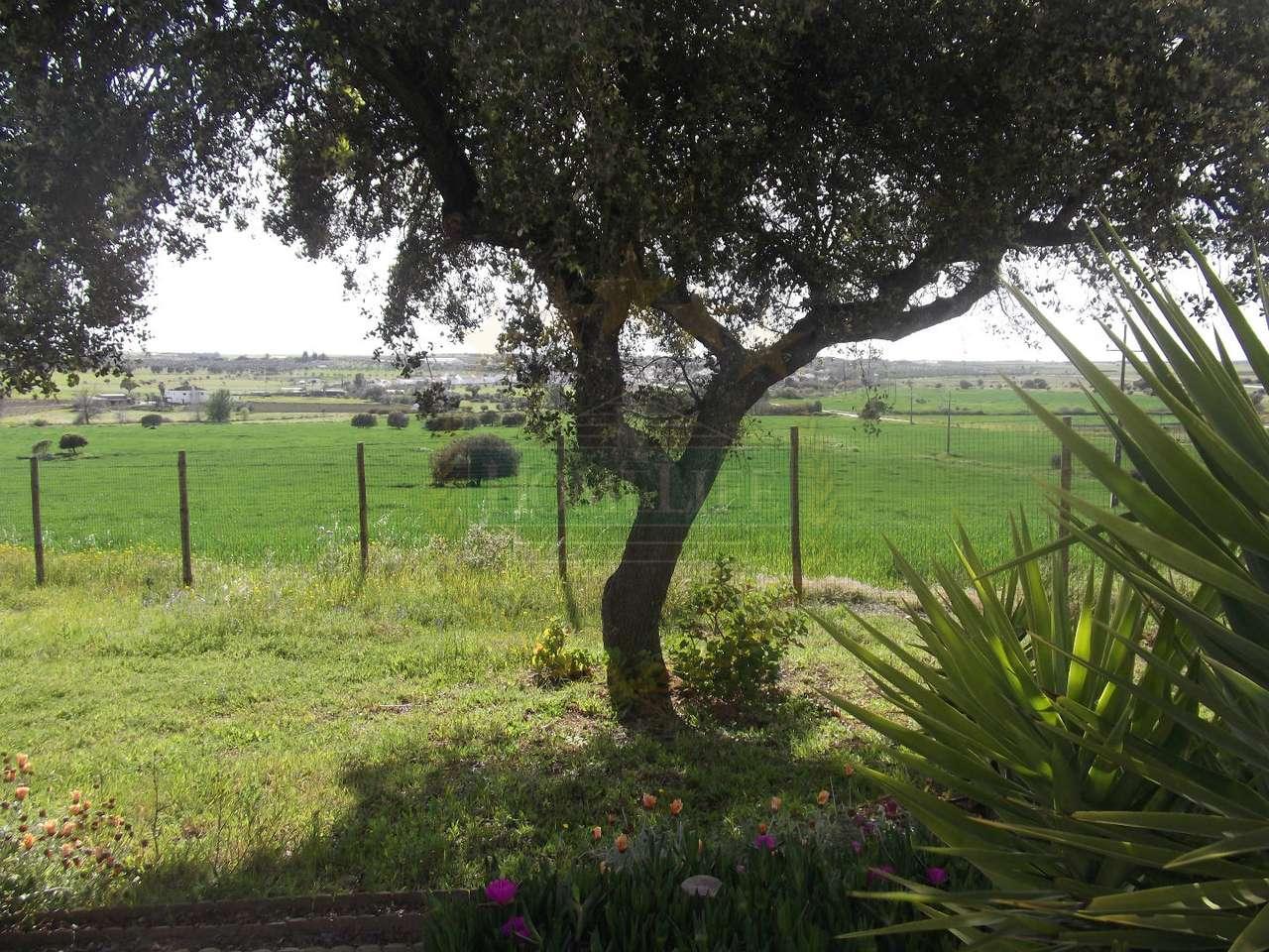 Quintas e herdades para comprar, São Miguel de Machede, Évora - Foto 27