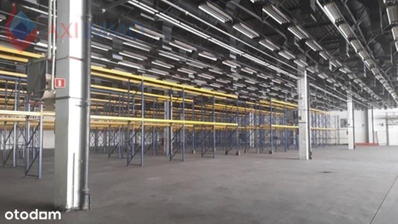 Hala/Magazyn, 5 000 m², Pabianice