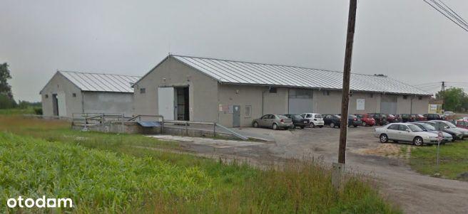 2 magazyny po 630 m2 - Krobia - 3 km od A1