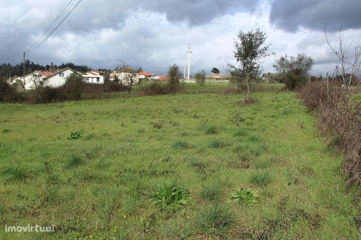 Terreno para comprar, Mortágua, Vale de Remígio, Cortegaça e Almaça, Viseu - Foto 2