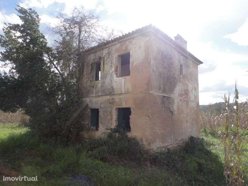 Quintas e herdades para comprar, São Miguel do Rio Torto e Rossio Ao Sul do Tejo, Abrantes, Santarém - Foto 1