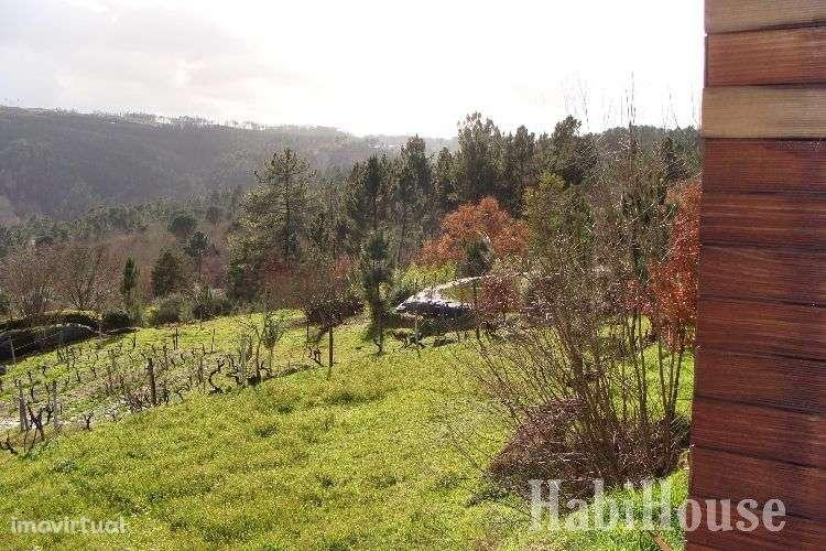 Quintas e herdades para comprar, Povolide, Viseu - Foto 15