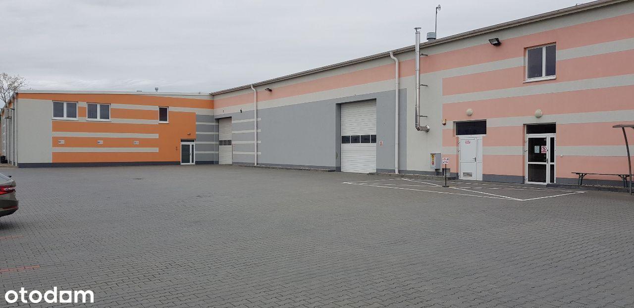 Hala produkcyjna i magazynowa 10000m2