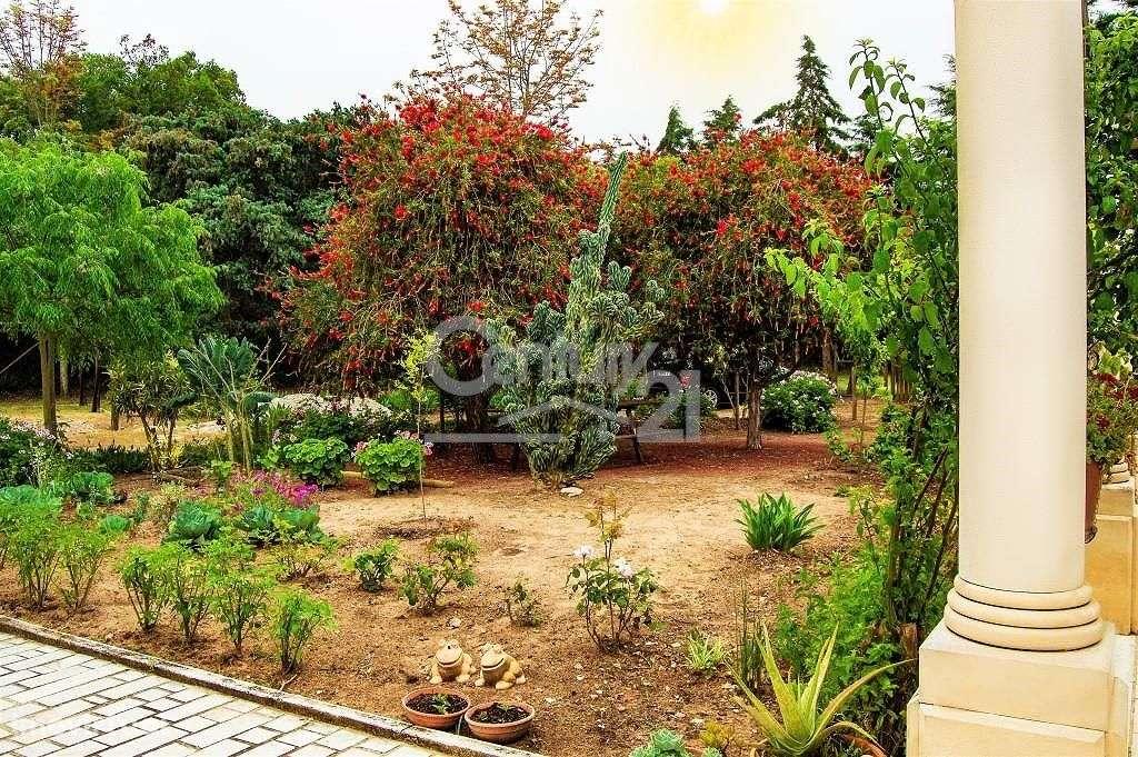 Quintas e herdades para comprar, Santiago do Cacém, Santa Cruz e São Bartolomeu da Serra, Setúbal - Foto 31