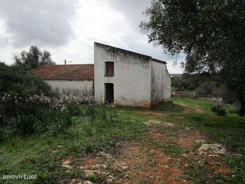 Quintas e herdades para comprar, Estômbar e Parchal, Faro - Foto 8