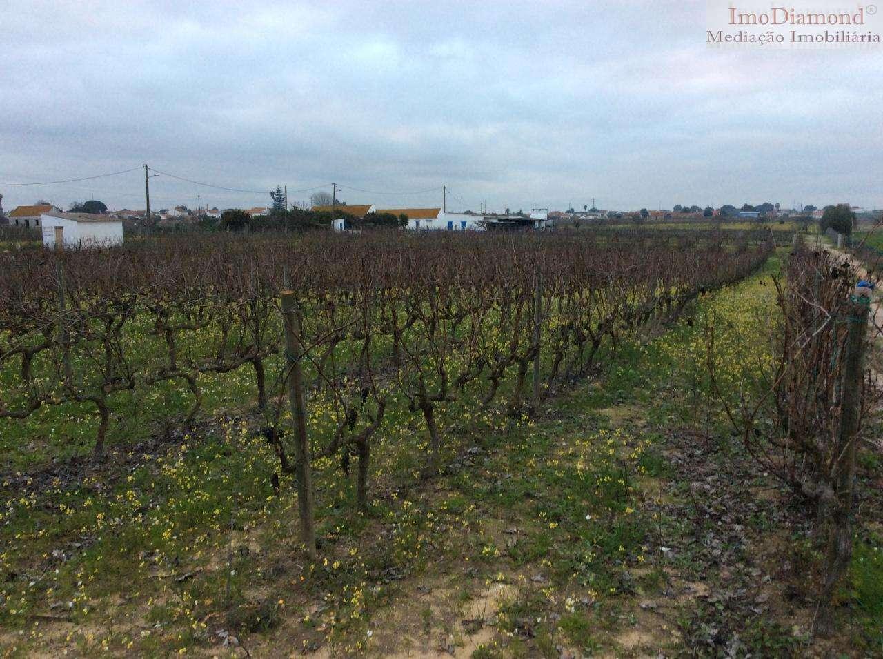 Quintas e herdades para comprar, Pinhal Novo, Setúbal - Foto 3