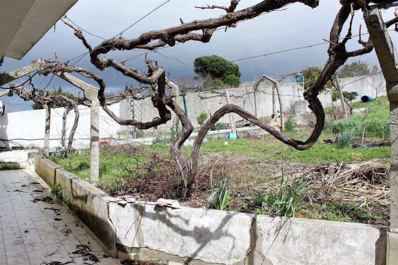 Moradia para comprar, Lourinhã e Atalaia, Lisboa - Foto 14