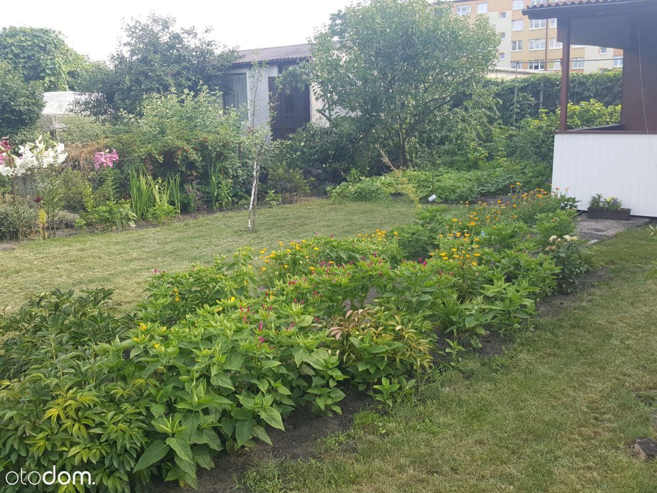 Sprzedam działkę ogrodniczą - rezerwacja