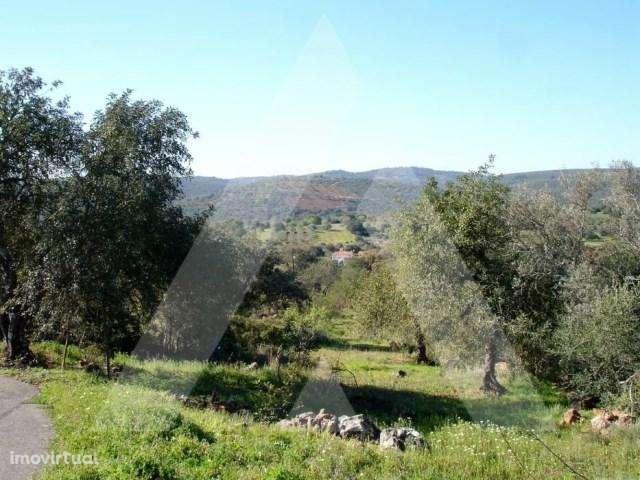 Terreno para comprar, Querença, Tôr e Benafim, Faro - Foto 4