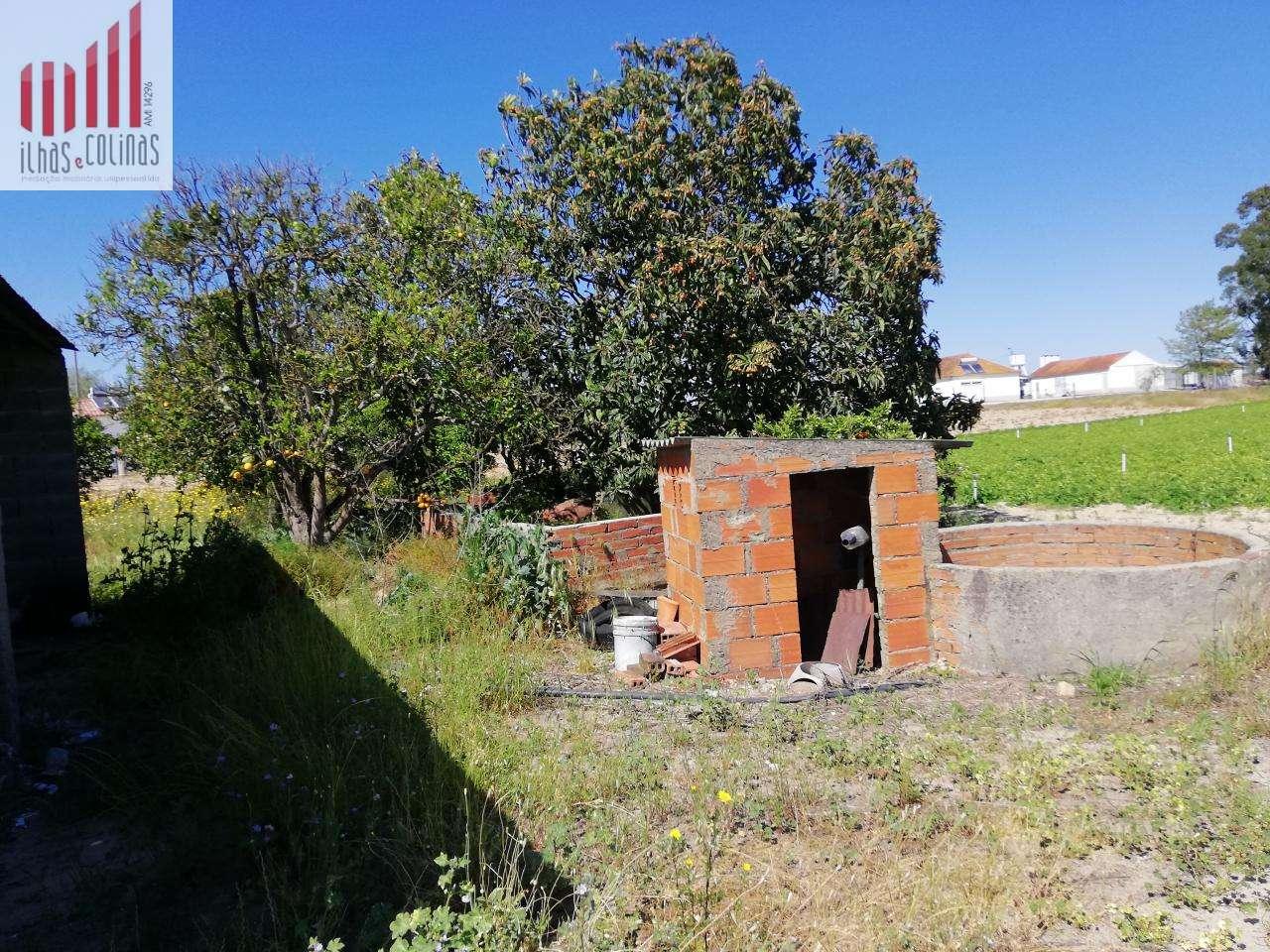 Quintas e herdades para comprar, Salvaterra de Magos e Foros de Salvaterra, Santarém - Foto 18