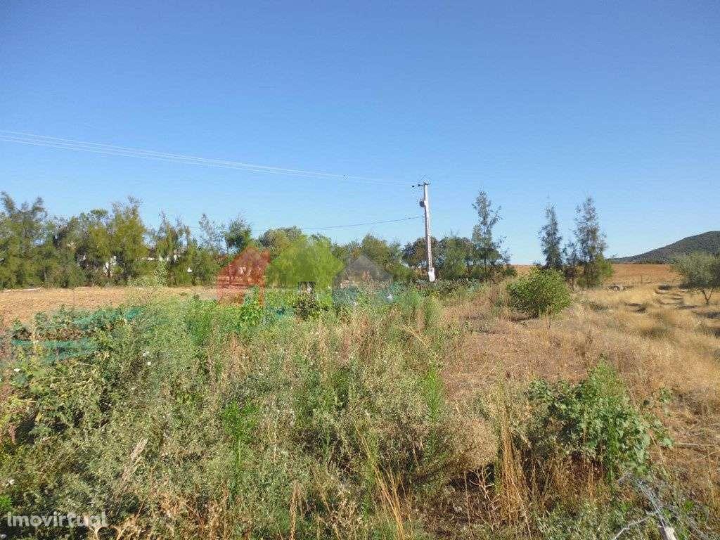 Quintas e herdades para comprar, Vila Verde de Ficalho, Beja - Foto 7