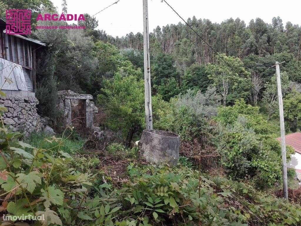 Quintas e herdades para comprar, Caires, Amares, Braga - Foto 3